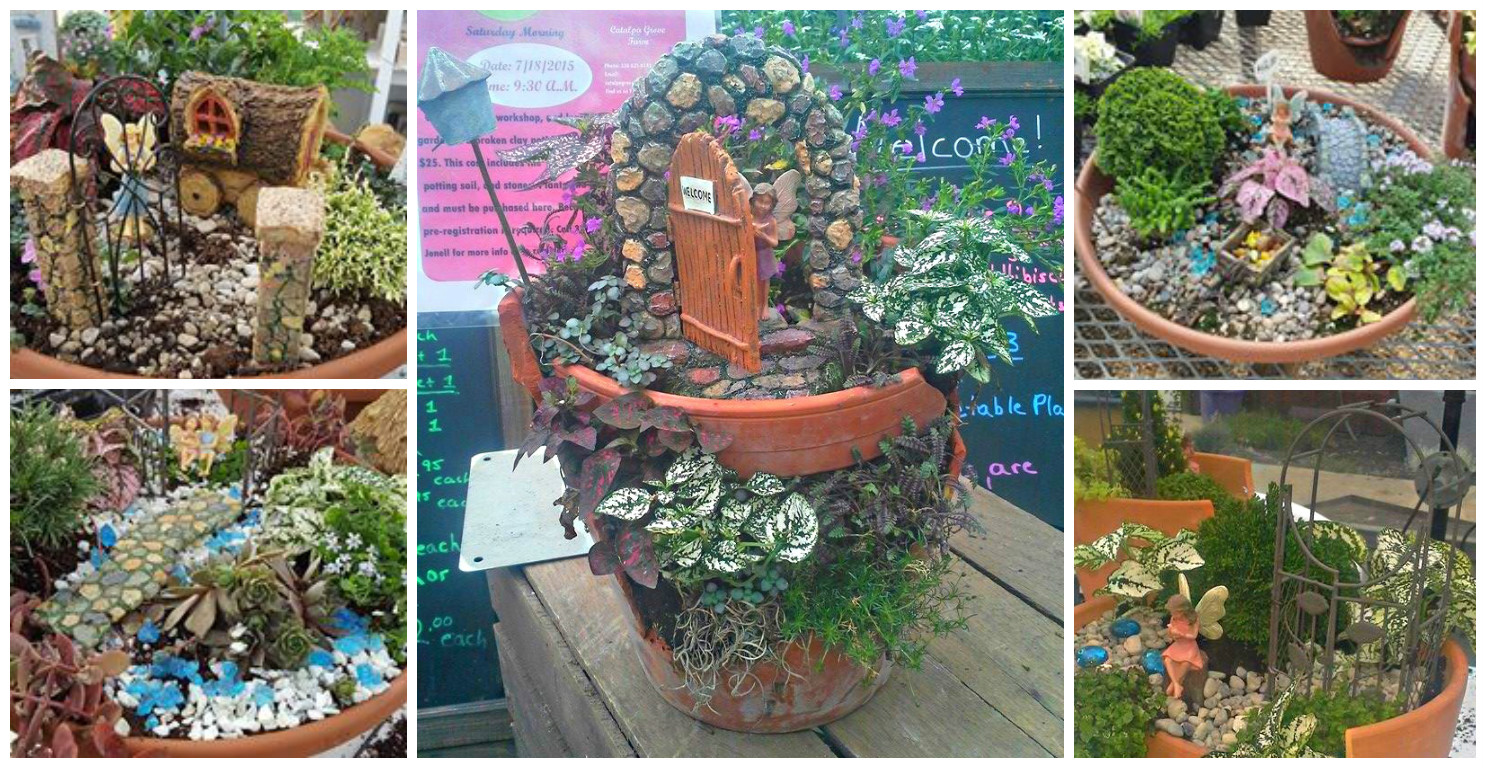 build your own fairy garden meet your miracle of boardman oh